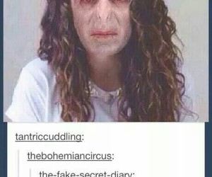 lorde, funny, and harry potter image
