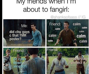 the maze runner, funny, and newt image