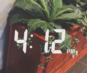 pale, plants, and soft ghetto image
