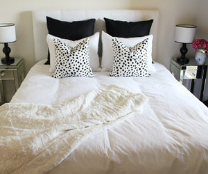 bedroom, dalmation, and fur image