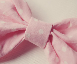 pink, bow, and photography image
