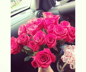 luxury red arnoldi's love image