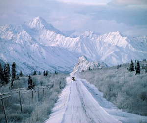 nature, scenery, and tumblr image