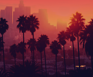 sunset, summer, and city image