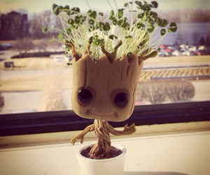 groot and plants image