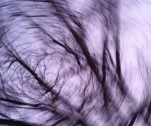 tree, grunge, and purple image