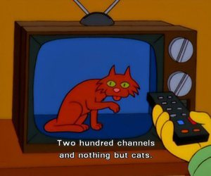 cat, the simpsons, and tv image