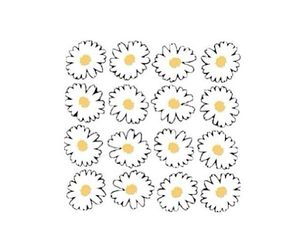 flowers, transparent, and daisy image