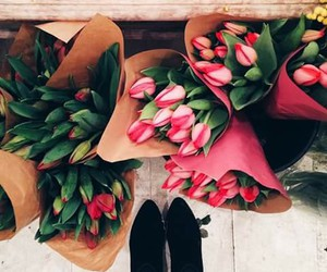 flower, red, and tulip image