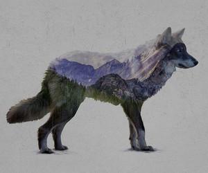 art, wolf, and beauty image