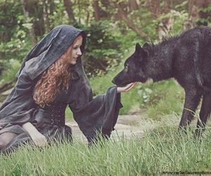 nature and wolf image