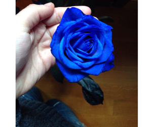 adore, beautiful, and blue image