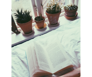 book, bookworm, and cacti image