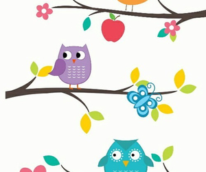 owl and wallpaper image