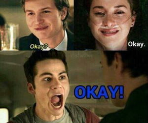 teen wolf, okay, and dylan o'brien image