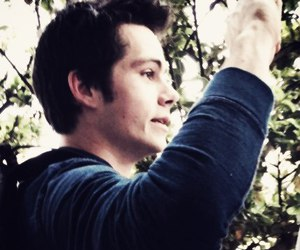 teen wolf, stiles, and dylan o`brien image