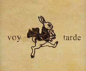 rabbit, alice, and alice in wonderland image