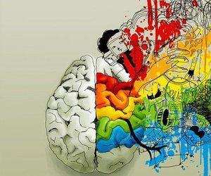 brain, art, and high image