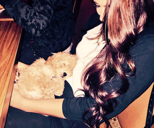 lovely, andrea russet, and puppy image