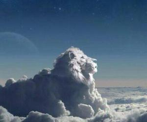lion, clouds, and sky image