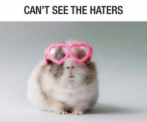haters, cute, and pink image