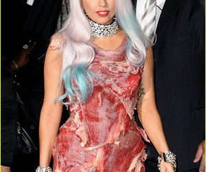 Lady gaga and meat dress image