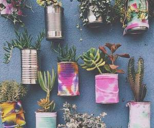 beautiful, colors, and plants image