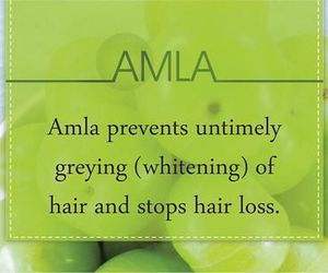 tips, hair care, and hair health image