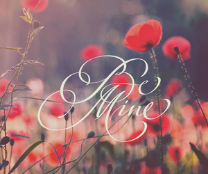 flowers, love, and be mine image