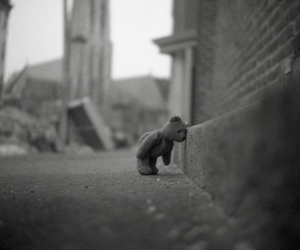 bear, sad, and black and white image