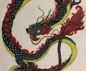 anger, angry, and chinese dragon image