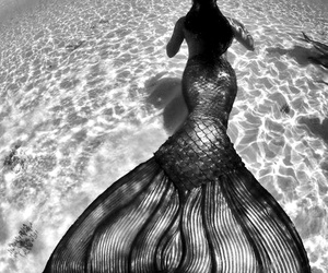 mermaid, sea, and water image