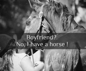 horse, boyfriend, and passion image