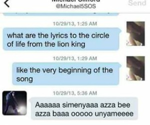 funny, lion king, and 5sos image