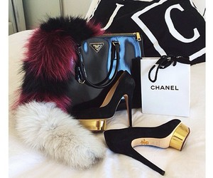 bag, luxury, and shoes image