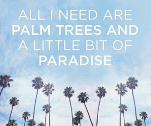 paradise, palm trees, and summer image