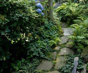 flowers, secret, and garden image