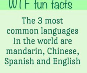 chinese, common, and english image