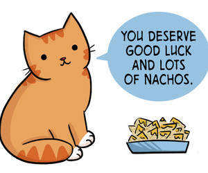 cat, nachos, and positive image