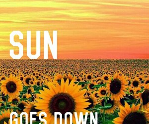 down, flowers, and sun image
