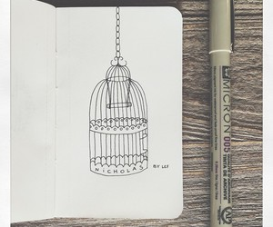 art, birdcage, and cage image
