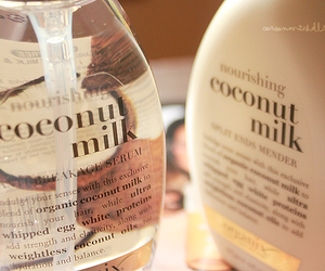 coconut, coconut milk, and beauty image