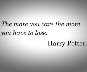 harry potter and lose image