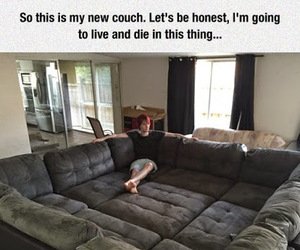couch and funny image