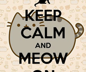 cat, keep calm, and meow image