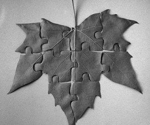 puzzle, leaf, and black and white image