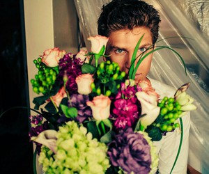 flowers, boy, and pll image