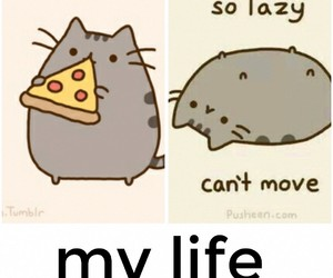 funny, Lazy, and life image