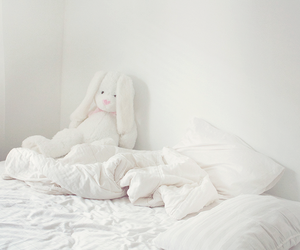 white, bed, and rabbit image