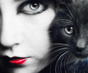 cat, amy lee, and eyes image